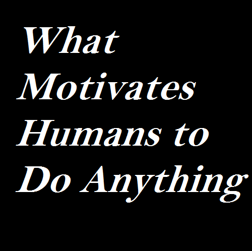 What Motivates Humans to Do Anything